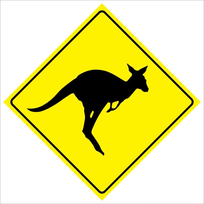 kangroo