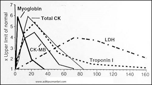 kalp-enzim-grafi